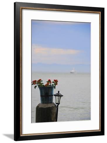 Flower Pot on Sausalito Pier, California-Anna Miller-Framed Art Print