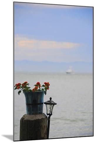 Flower Pot on Sausalito Pier, California-Anna Miller-Mounted Photographic Print