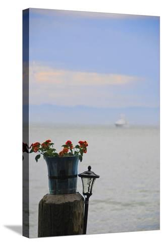 Flower Pot on Sausalito Pier, California-Anna Miller-Stretched Canvas Print