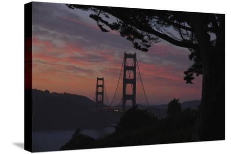 San Francisco, California-Anna Miller-Stretched Canvas Print