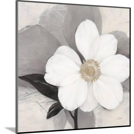 Midday Bloom-Ivo (Lipman)-Mounted Art Print