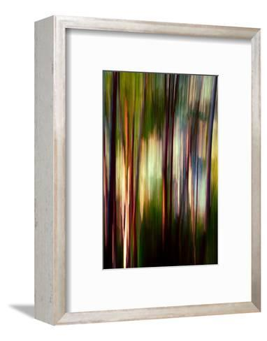 Trees-Ursula Abresch-Framed Art Print