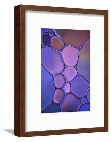 Purple Stained Glass-Cora Niele-Framed Art Print
