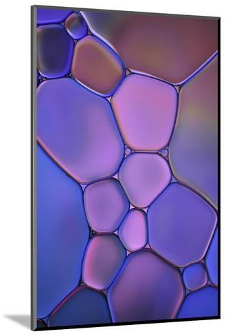 Purple Stained Glass-Cora Niele-Mounted Photographic Print