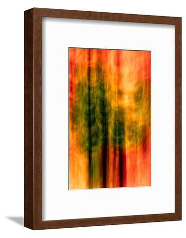 Cedars At Night-Ursula Abresch-Framed Art Print