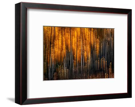 Falling Stars-Ursula Abresch-Framed Art Print
