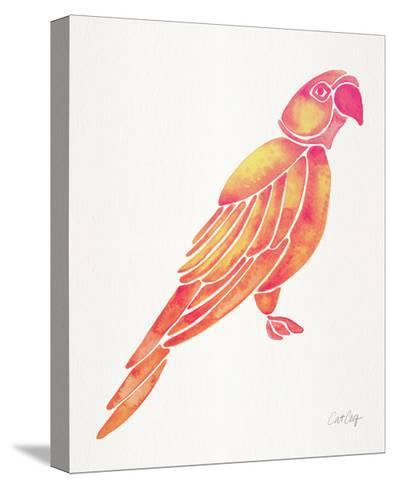 Pink Perched Parrot-Cat Coquillette-Stretched Canvas Print