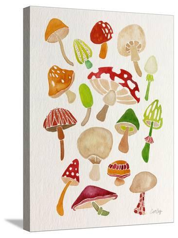 Mushrooms-Cat Coquillette-Stretched Canvas Print