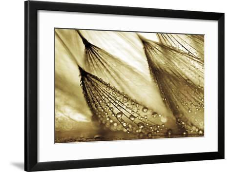 Sweeping in the Rain-Gold-Ursula Abresch-Framed Art Print