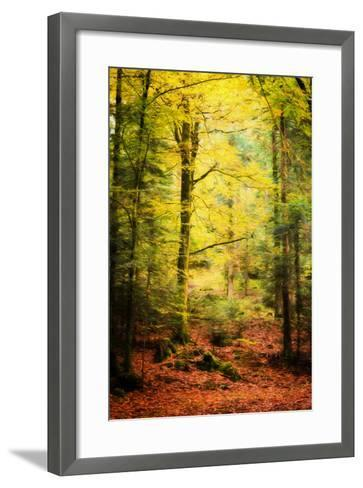 Passing By-Philippe Sainte-Laudy-Framed Art Print