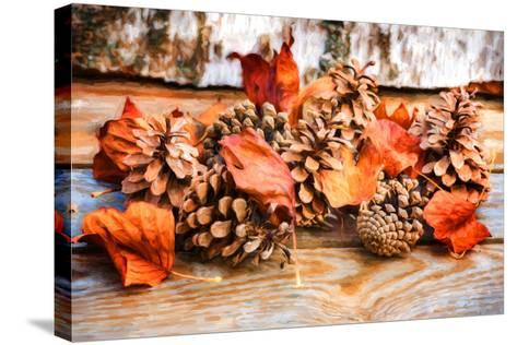 Fall Toys-Philippe Sainte-Laudy-Stretched Canvas Print