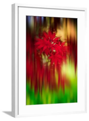 Red Instrumental-Philippe Sainte-Laudy-Framed Art Print