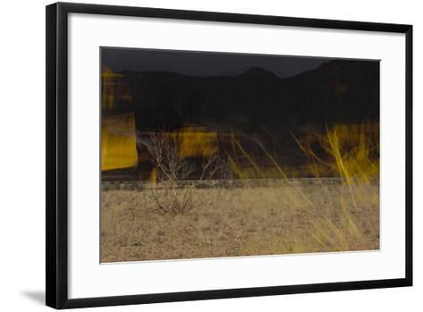 Flame Trees, Namibia-Valda Bailey-Framed Art Print