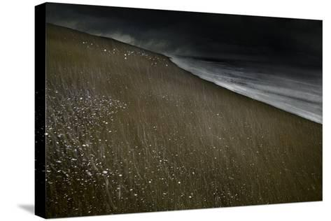 Against the Tide-Valda Bailey-Stretched Canvas Print