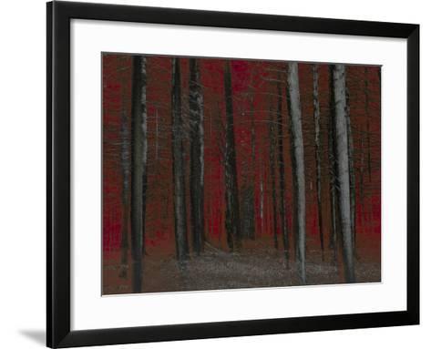 Red Sky at Night-Valda Bailey-Framed Art Print