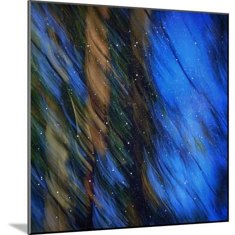 Stardust on Pines-Ursula Abresch-Mounted Photographic Print