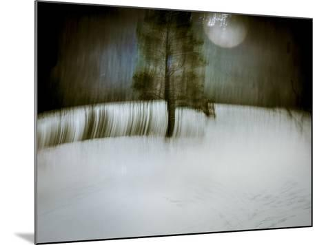Under a Moonlit Sky-Valda Bailey-Mounted Photographic Print