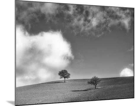 Me and You-Marco Carmassi-Mounted Photographic Print
