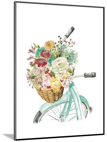 Basket and Bike-Studio Rofino-Mounted Art Print