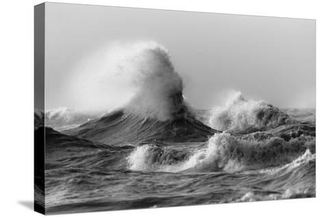 November Gales 2-Mark Spowart-Stretched Canvas Print