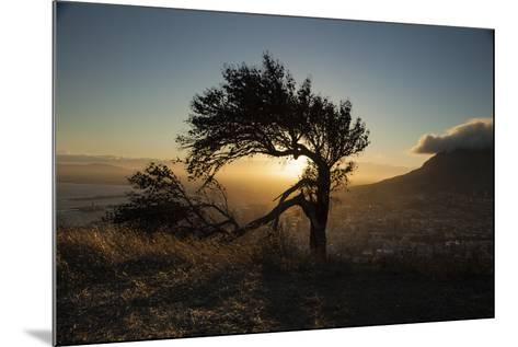 By Table Mountain-Valda Bailey-Mounted Photographic Print