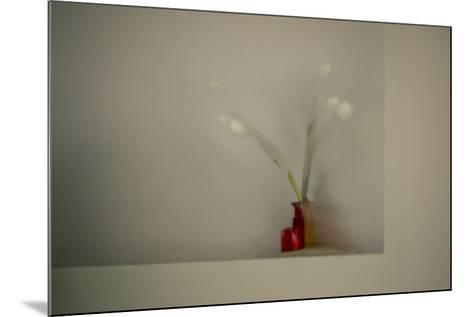 Tulips-Valda Bailey-Mounted Photographic Print