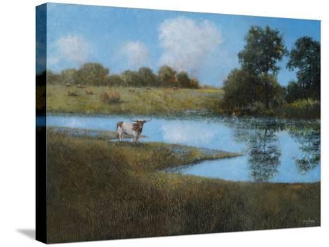 Follow Your Horizon-Thomas Stotts-Stretched Canvas Print