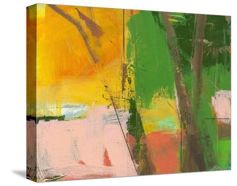 Pink Light Fragment 9-Angela Saxon-Stretched Canvas Print