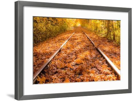 Train Tracks in the Fall-Tim Oldford-Framed Art Print