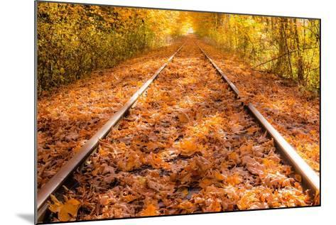 Train Tracks in the Fall-Tim Oldford-Mounted Photographic Print