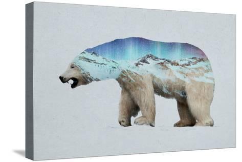 The Arctic Polar Bear-Davies Babies-Stretched Canvas Print