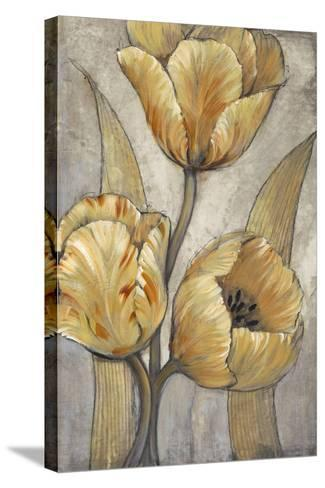 Ochre & Grey Tulips I-Tim O'toole-Stretched Canvas Print