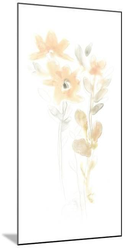 Corsage III-June Erica Vess-Mounted Premium Giclee Print