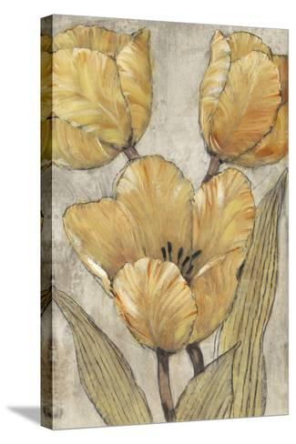 Ochre & Grey Tulips II-Tim O'toole-Stretched Canvas Print