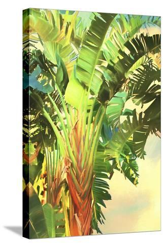 Bird of Paradise Palm I-Melinda Bradshaw-Stretched Canvas Print