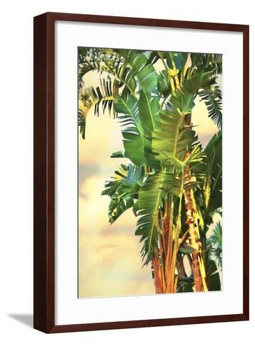 Bird of Paradise Palm II-Melinda Bradshaw-Framed Art Print