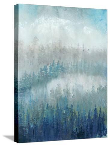 Above the Mist II-Tim O'toole-Stretched Canvas Print