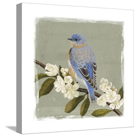 Bluebird Branch II-Victoria Borges-Stretched Canvas Print