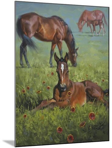 Indian Blanket-Jack Sorenson-Mounted Art Print