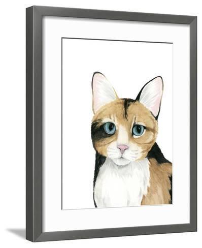 Cat Portrait II-Grace Popp-Framed Art Print
