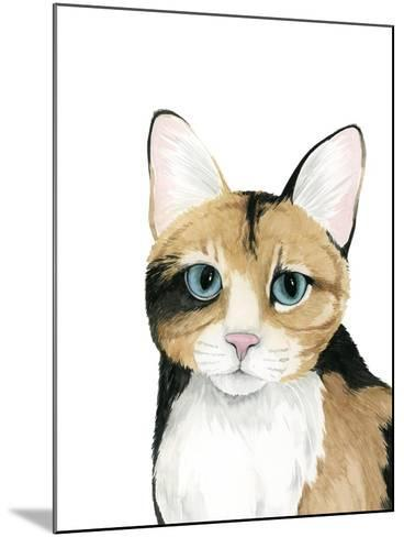 Cat Portrait II-Grace Popp-Mounted Art Print