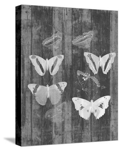 Rustic Butterfly Chart I-Jennifer Goldberger-Stretched Canvas Print