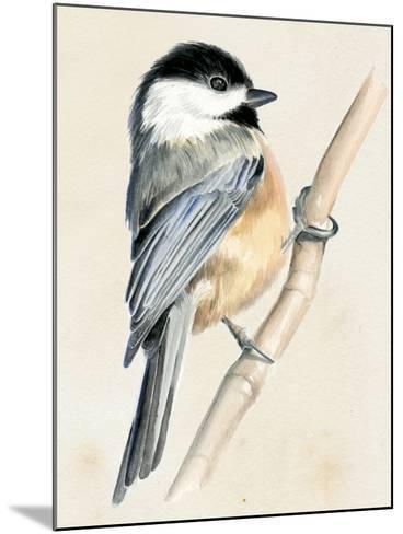 Little Bird on Branch II-Jennifer Paxton Parker-Mounted Art Print