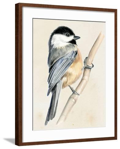 Little Bird on Branch II-Jennifer Paxton Parker-Framed Art Print