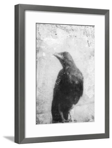 B&W Flight III-Ingrid Blixt-Framed Art Print