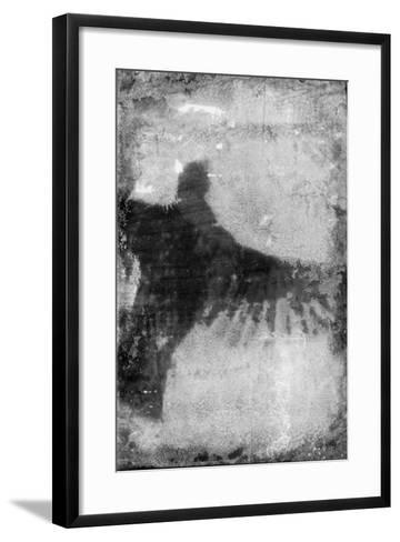 B&W Flight VIII-Ingrid Blixt-Framed Art Print