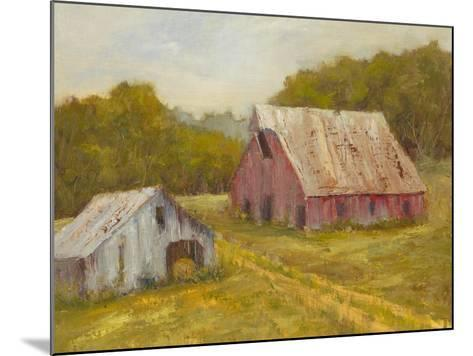 Country Barns-Marilyn Wendling-Mounted Art Print