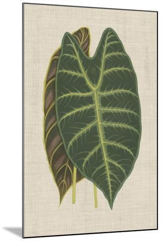 Leaves on Linen III-Unknown-Mounted Premium Giclee Print