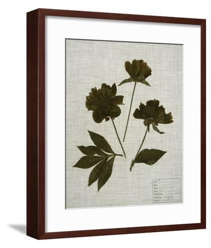 Pressed Leaves on Linen II-Vision Studio-Framed Art Print