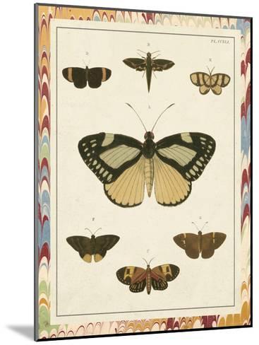 Marble Butterflies II-Vision Studio-Mounted Art Print